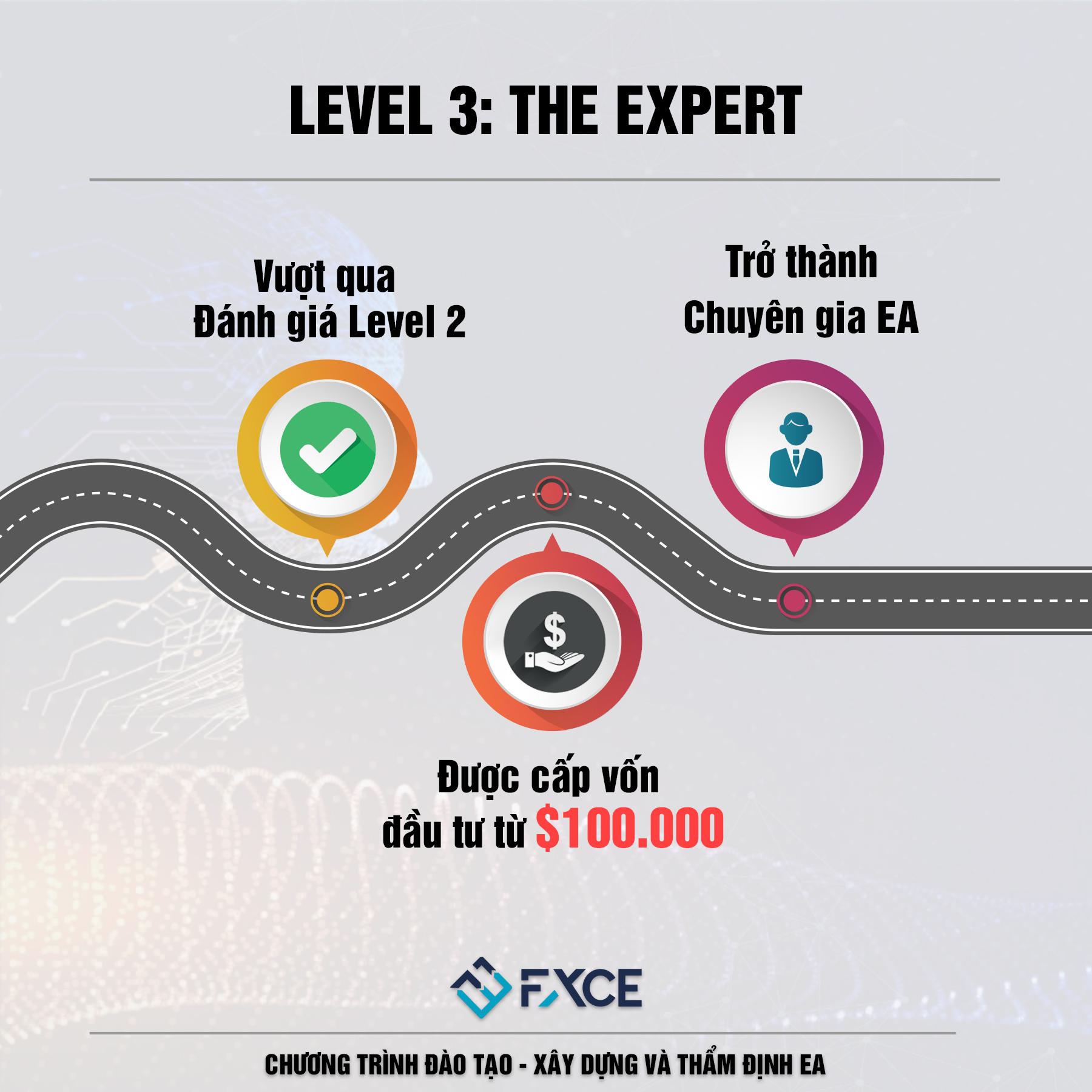 LV3 THE EXPERT.jpg